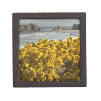 Coastal views, Bandon, Oregon 2 Gift Box