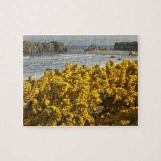 Coastal views, Bandon, Oregon 2 Jigsaw Puzzle