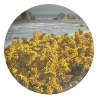 Coastal views, Bandon, Oregon 2 Melamine Plate