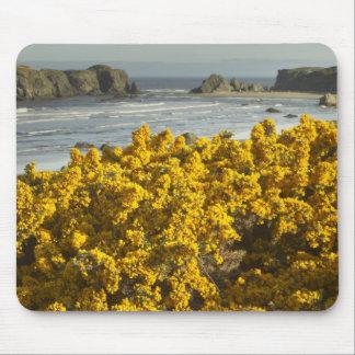 Coastal views, Bandon, Oregon 2 Mouse Pad