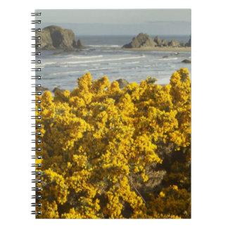 Coastal views, Bandon, Oregon 2 Notebook