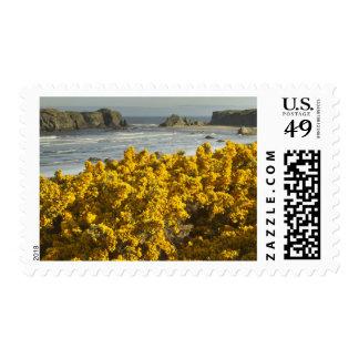 Coastal views, Bandon, Oregon 2 Stamps