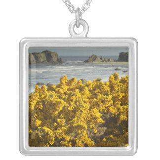 Coastal views, Bandon, Oregon 2 Silver Plated Necklace