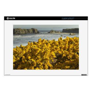 "Coastal views, Bandon, Oregon 2 Skins For 15"" Laptops"