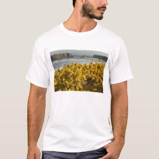 Coastal views, Bandon, Oregon 2 T-Shirt