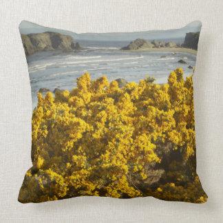 Coastal views, Bandon, Oregon 2 Throw Pillow