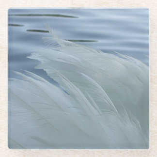 Coaster close-up of a white swan wings feathers