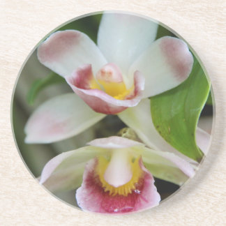 Coaster - Fan Shaped Orchid