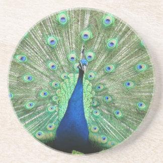 Coaster - Peacock