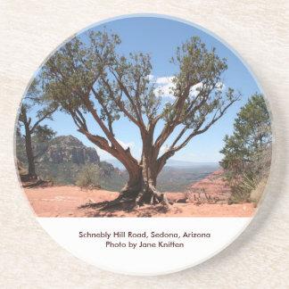 Coaster / Sedona, Arizona - Schnebly Hill Rd