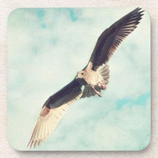 coaster set cork flying seagull photograph