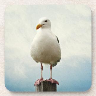 coaster set cork seagull on fence post