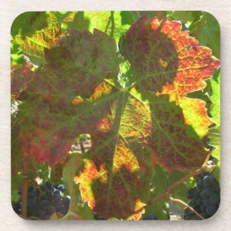 Coaster set - Grape leaf
