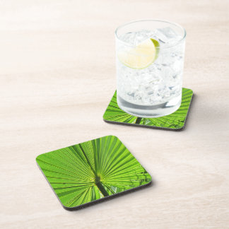 Coaster Set - Green Palm Leaf