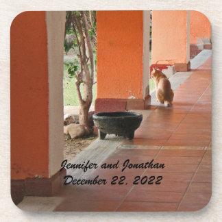 Coaster Set of 6, El Gato, Personalized