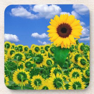 Coaster Set-Sunflowers