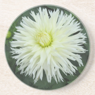 Coaster - White Chrysanthemum