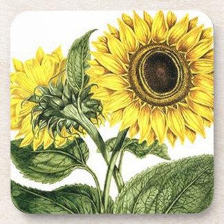 Coasters Antique Floral Flowers Sunflower Vintage