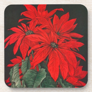 Coasters Gift Christmas Red Poinsettia Red Flower