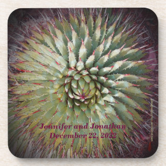 Coasters, Set of 6, Agave Spikes