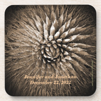 Coasters, Set of 6, Agave Spikes Sepia