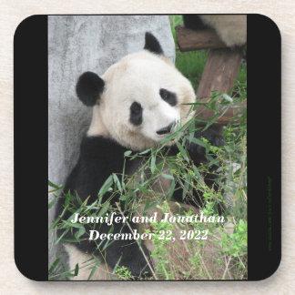 Coasters, Set of 6, Panda