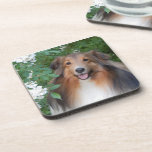 Coasters - set of 6 - with Sheltie