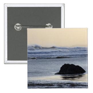 coastline at dawn button