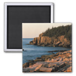 Coastline of Acadia National Park , Maine 2 Inch Square Magnet