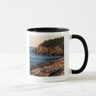 Coastline of Acadia National Park , Maine Mug