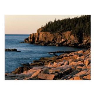 Coastline of Acadia National Park Maine Postcard
