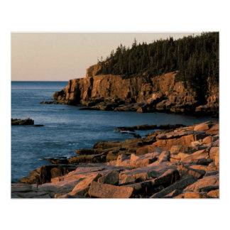 Coastline of Acadia National Park , Maine Poster
