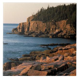 Coastline of Acadia National Park Maine Tiles