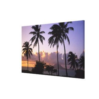 Coastline St. Kitts Canvas Print