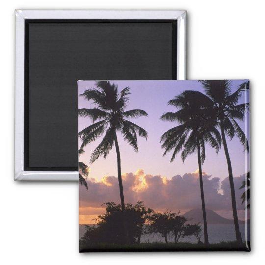 Coastline St. Kitts Magnet