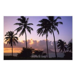 Coastline St. Kitts Photo Print