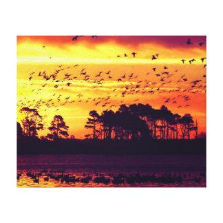 Coastline Sunset, Birds Canvas Print