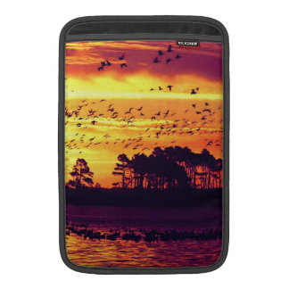 Coastline Sunset, Birds MacBook Air Sleeve