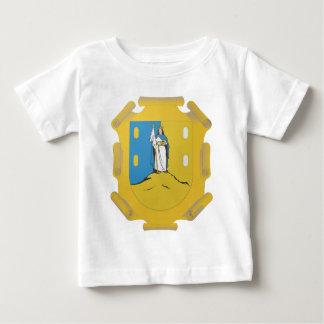 Coat Arms San Luis Potosi Official Mexico Symbol Baby T-Shirt