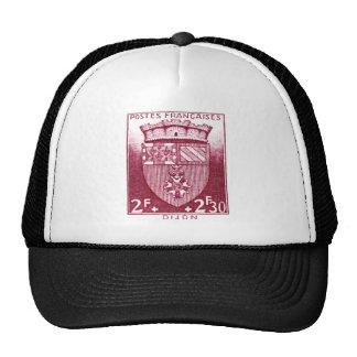 Coat of Arms, Dijon France Mesh Hats