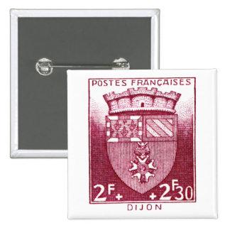 Coat of Arms, Dijon France Pins