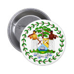 Coat of arms of Belize Pins