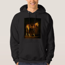 Coat of Many Colors Hoodie