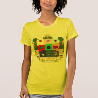 Coat of Soul of the melancholic wisdom-seeker Tee Shirt