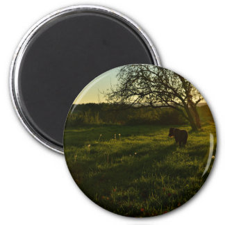 Coat Themed, Large Dog With A Dark Coat Walks Acro Magnet