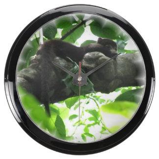 Coati Aquavista Clock