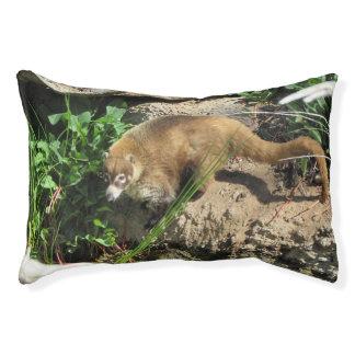 Coati Dog Bed