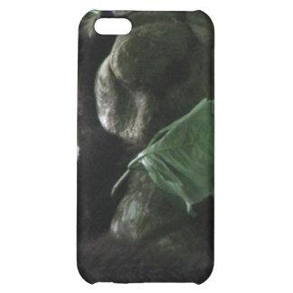 Coati iPhone Case iPhone 5C Cover