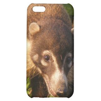Coati Mundi iPhone 4 Case