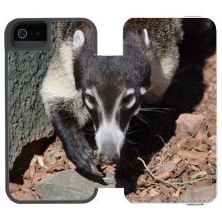Coati sospechado blanco adorable funda cartera para iPhone 5 watson